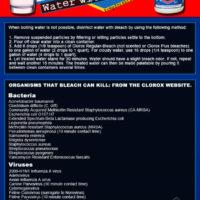 Bleach-Water-Disinfect